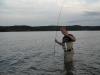 Wiper Lake Monroe