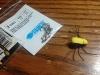 donovans_bug